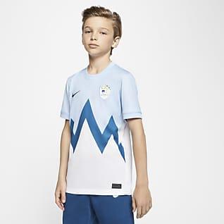 Slovenia 2020 Stadium Home Camiseta de fútbol - Niño/a