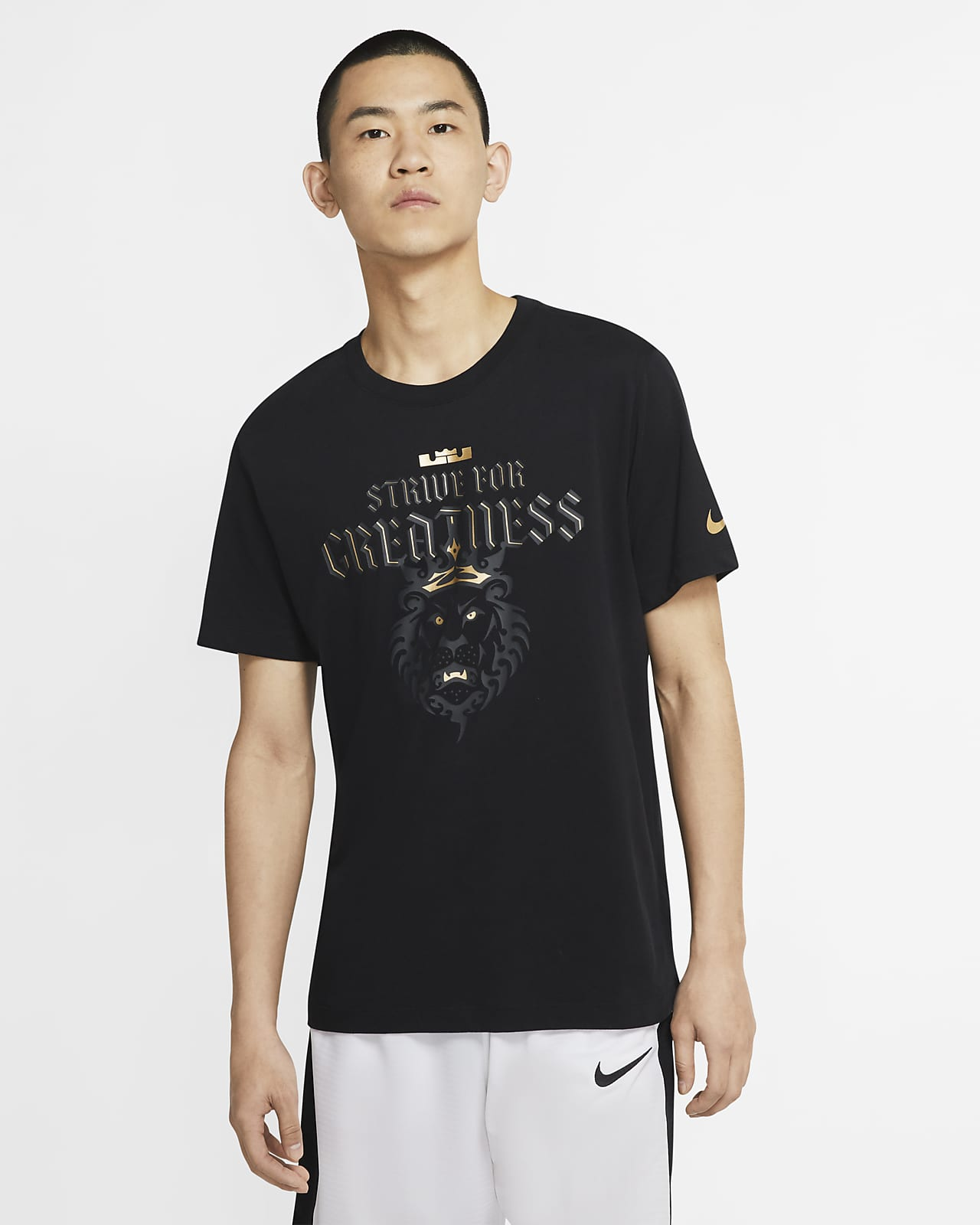Nike Dri-FIT LeBron Strive For Greatness 男子篮球T恤