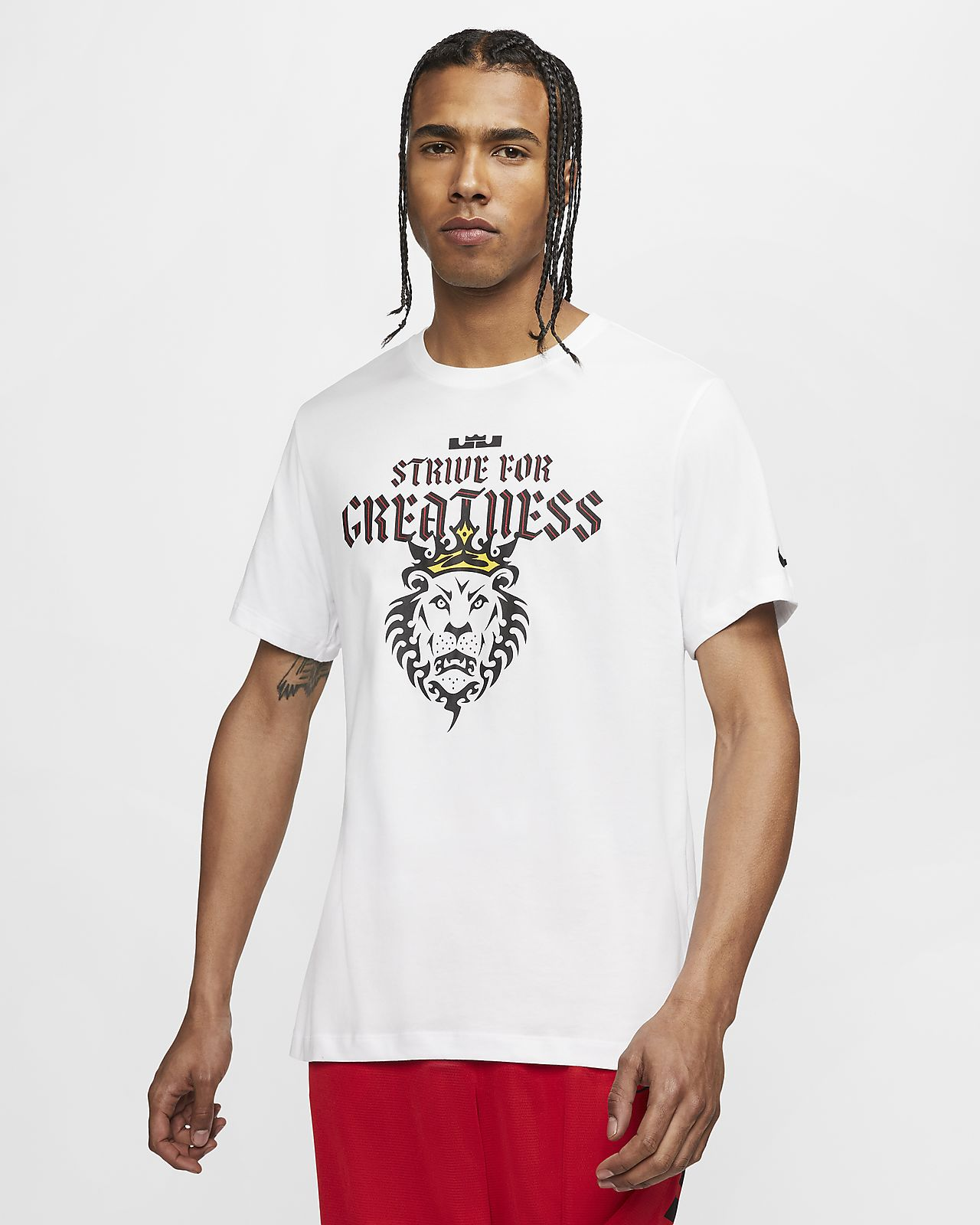 Nike Dri-FIT LeBron Strive For Greatness Basketball T-Shirt