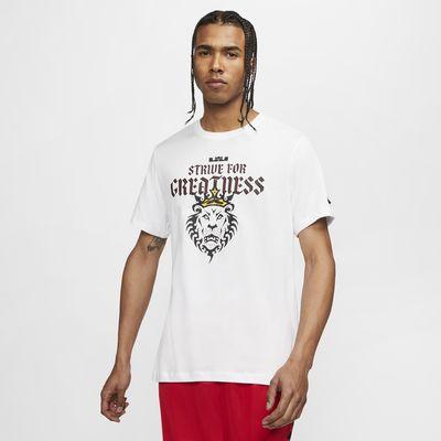Tee-shirt de basketball Nike Dri-FIT LeBron Strive For Greatness