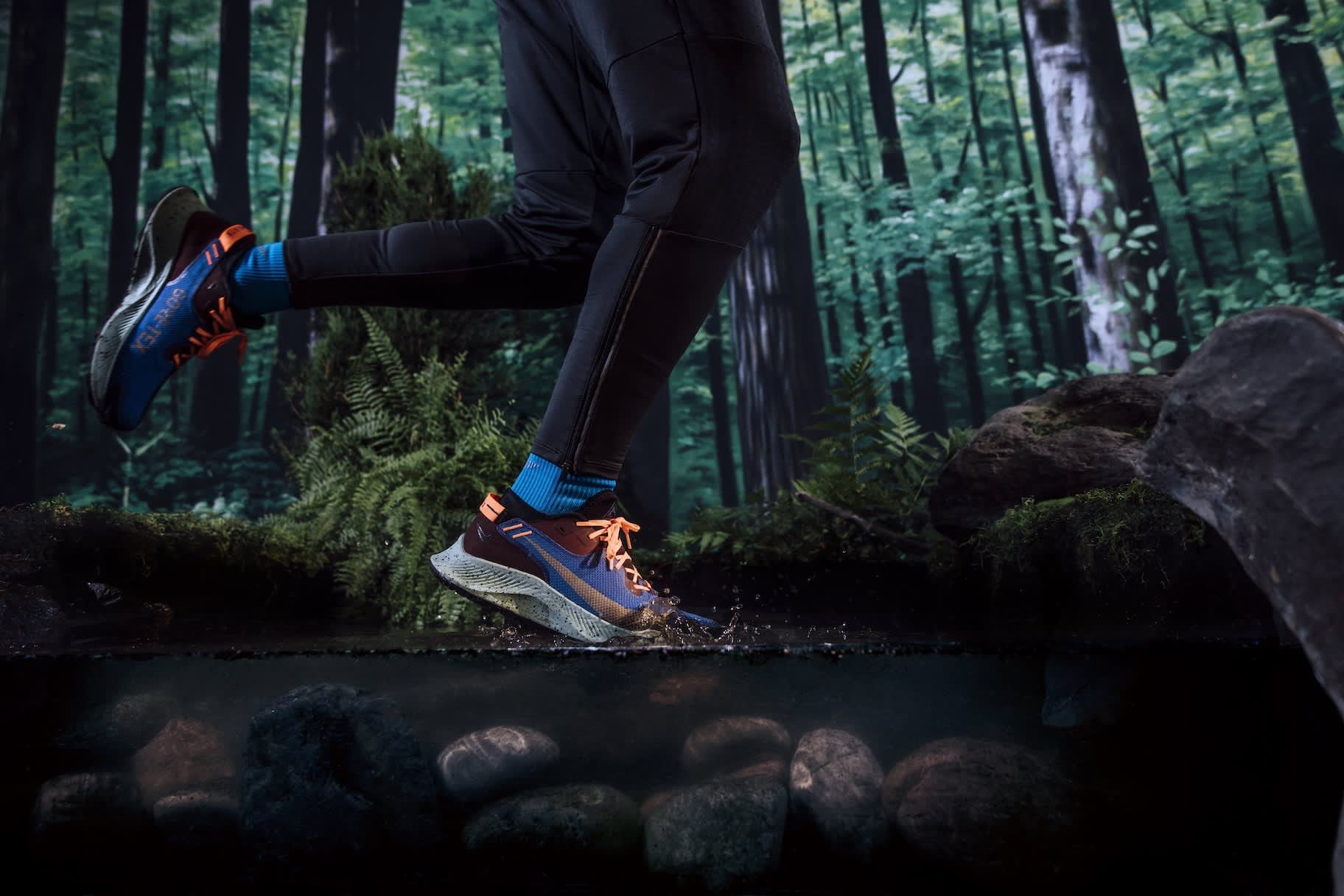 Everything You Need to Get Started Trail Running